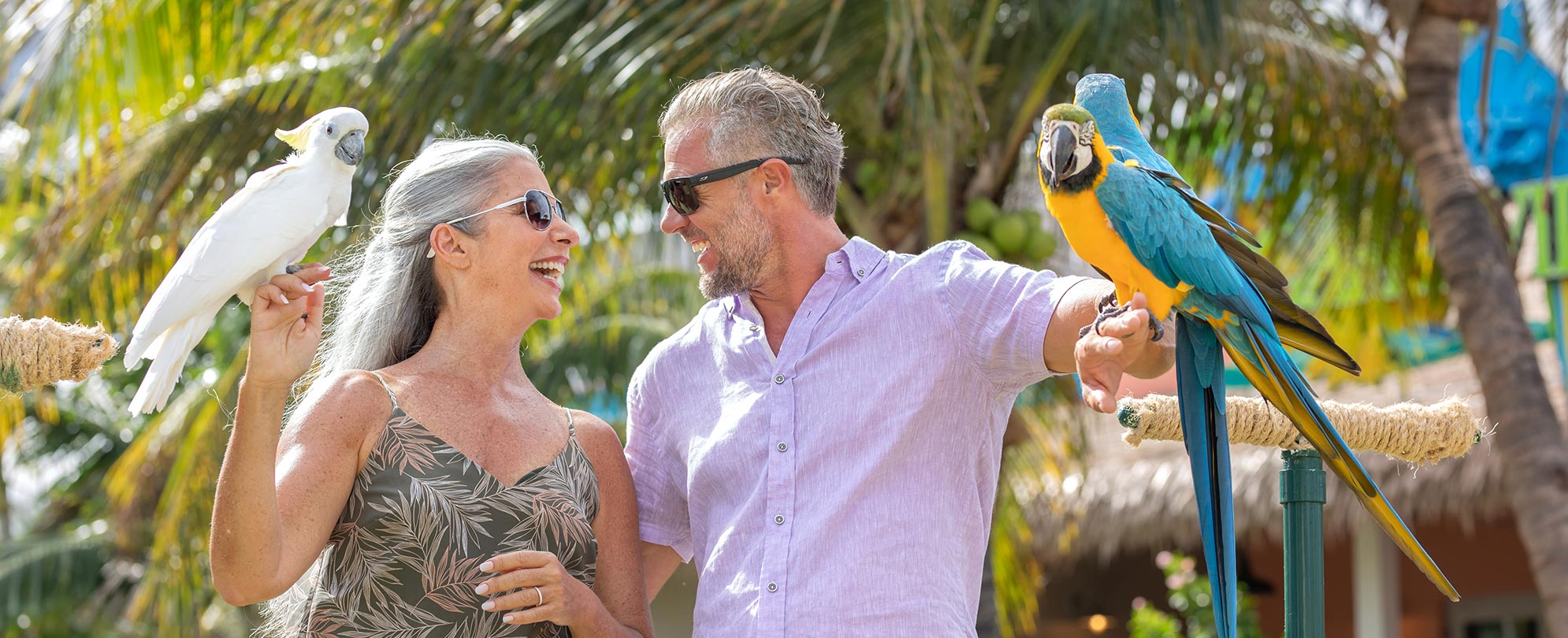 A man and woman hold tropical birds on their arms while enjoying owner exclusives from Margaritaville Vacation Club.