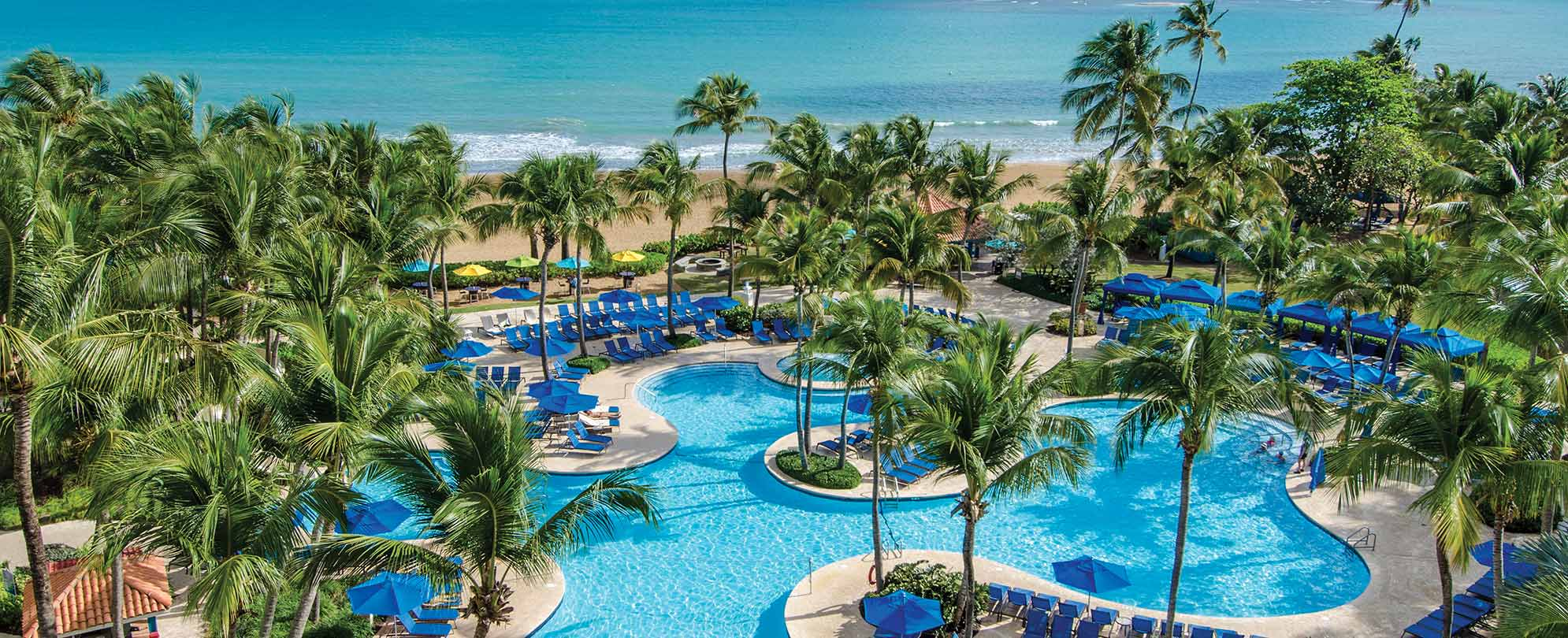 An oceanfront pool surrounded by palm trees at Margaritaville Vacation Club by Wyndham - Rio Mar, a timeshare resort.